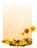 A paper with sunflowers Royalty Free Stock Photos