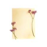 paper tappning för blomma Arkivfoton