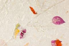 Paper textur för mullbärsträd Arkivfoto
