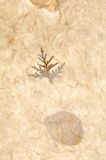 Paper texture. Collages leaves with different shapes, rice paper texture Royalty Free Stock Photo