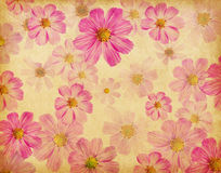 Paper texture with beautiful pink flowers. Stock Photography