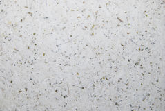 Paper texture. Texture of recycled paper, made from waste paper and dried leaves Stock Images