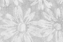 Paper texture. A sheet of paper with texture chamomile Royalty Free Stock Photography