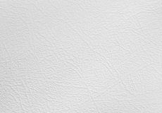 Paper texture Stock Images