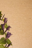 paper texturer för blomma Arkivfoton
