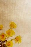 paper texturer för blomma Royaltyfria Foton