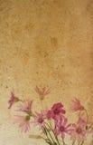 paper texturer för blomma Royaltyfri Bild