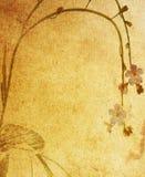 paper texturer för blomma Royaltyfria Bilder