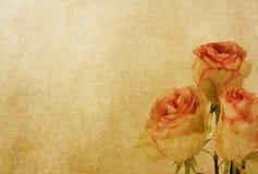 paper texturer för blomma Fotografering för Bildbyråer