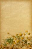 Paper textures. Stock Photo