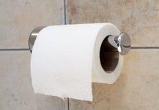 paper toalett Arkivbild