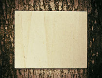 Paper on tree Stock Images