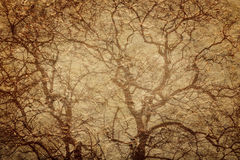 Paper with tree branches Stock Photography