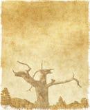 paper tree vintage Στοκ Φωτογραφία