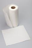paper white Royaltyfri Fotografi