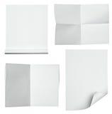 paper white Arkivfoton