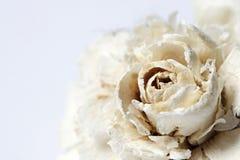 paper white för blomma Royaltyfria Bilder