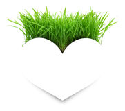 Paper white heart on green grass Royalty Free Stock Images