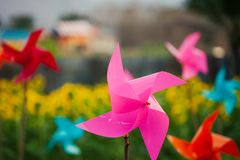 Paper windmills, pinwheels in sunflower stock photography