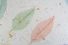 Paper With Leaves Stock Photography