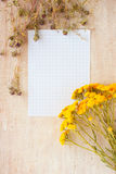 Paper for writing and medicinal herb Stock Photo