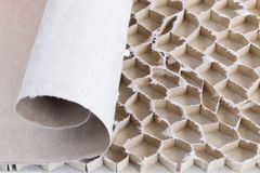Paperboard honeycomb bee. The recycled paperboard honeycomb bee Stock Photo