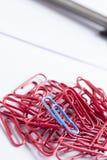 Paperclips dispersados en la superficie blanca Fotografía de archivo libre de regalías