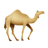 Papercut Camel Recycled Paper Royalty Free Stock Images