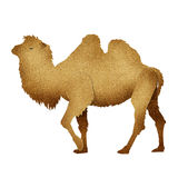 Papercut Camel Recycled Paper Stock Photo