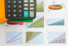 Papers charts of successful business Royalty Free Stock Photography