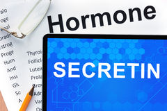 Papers with hormones list and tablet  with word secretin. Royalty Free Stock Photo