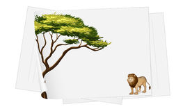Papers and lion drawing Royalty Free Stock Photos