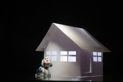 Papery house and toy dog Stock Photos