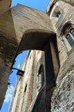 Papes Palace, Avignon Photo libre de droits