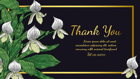 Paphiopedilum orchids card by hand drawing. Royalty Free Stock Images