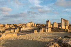 Paphos Archaeological park in the light of the evening sun Stock Photo