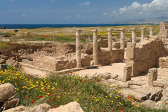 Paphos archeological site in cyprus Stock Photography