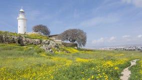 Paphos Archeologiczny park - Cypr Zdjęcia Royalty Free