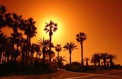 Paphos beach Stock Image