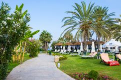 Paphos, Cyprus - July 20, 2017: Palm beach with empty sunbeds against Constantinou Bros Athena Beach Hotel. The hotel was fully re. Furbished in winter of 10/11 Stock Image