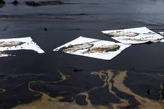 Papier absorbant utilisé pour rayer l'huile du pétrole brut renversé photographie stock libre de droits