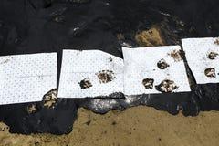 Papier absorbant utilisé pour rayer l'huile du pétrole brut renversé image stock
