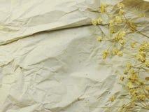 Papier avec les fleurs et le fond secs de copie de l'espace Photographie stock