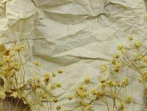 Papier avec les fleurs et le fond secs de copie de l'espace Images stock