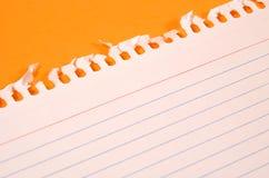 Papier blanc Image libre de droits