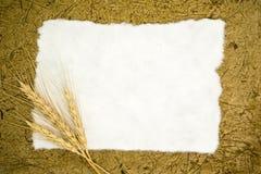 Papier blanc avec du blé d'oreilles images libres de droits