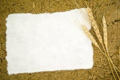 Papier blanc avec du blé d'oreilles photos libres de droits