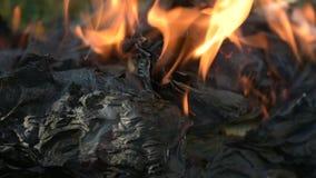 Papier brûlé par noir dans le feu Livre brûlant au sol banque de vidéos
