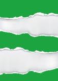 Papier déchiré par vert Photos libres de droits