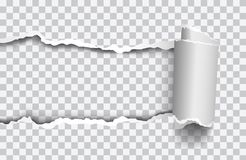 Papier déchiré réaliste de vecteur avec le bord rollled sur le fond transparent illustration stock
